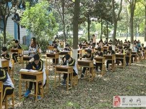 组图:湖北一学校为防作弊将考场搬进树林