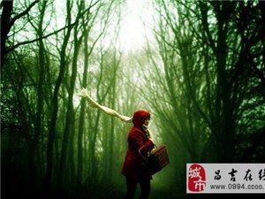 森林奇遇:全面�u�r你的人生