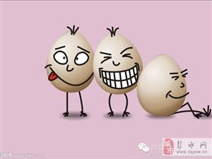 励志的鸡蛋