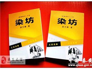 薛方晴45�f字�L篇小�f《染坊》正式出版