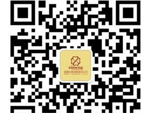 上海婚展:灵魂的震撼