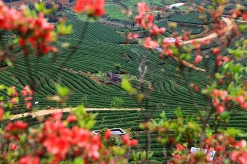 和春-美得让人窒息的最美乡村
