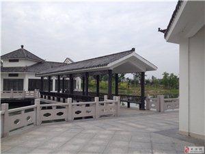 双洪公园(徽商一号旁)