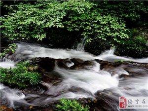 曲幽谷漫步——中国黄桑