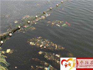 """""""环境靠大家,快乐你我他"""" 大型环保护河活动――-枣阳义工协会"""