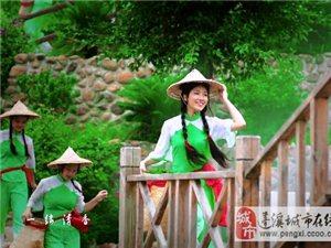 谭晶演唱中国首部茶文化音乐作品《飘香》歌词MV 同名微电影主题曲