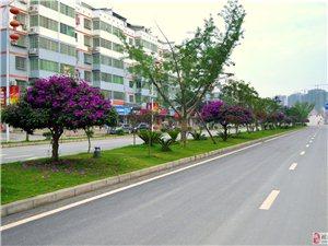 榕江新城区――随手拍