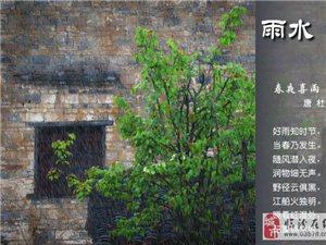 诗情画意44:【春夜喜雨】杜甫