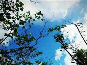 珠海的天空,科干的天空,真是�{到出汁