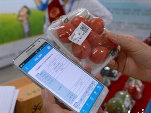 """衡水移动公司创新二维码应用让果蔬带上""""身份证"""""""