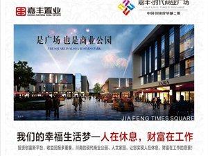 川南皮革城二期:嘉丰·时代商业广场载誉上市