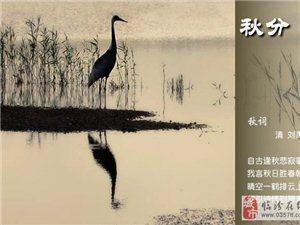 诗情画意52:【秋词】刘禹锡