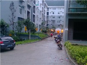 古蔺县凤凰城小区(保健站后面)噪音严重影响小区居民生活