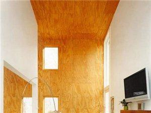 天然原木地板铺上墙 大胆创意勾勒纯美家居效果(图)
