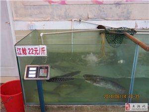 环保滁州城市――优质廉价的服务业