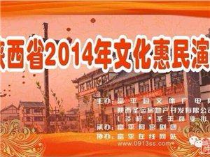 2014年文艺惠民演出走进淡村圣丰商业街