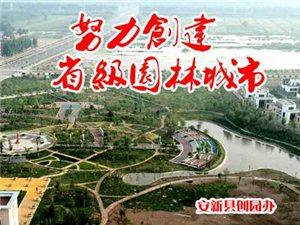 安新县创建省级园林城市