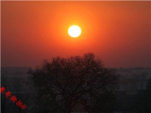 #豪哥街拍#追逐唯美夕阳之雪野夕阳