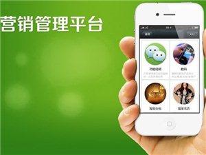 滨州微信营销专题