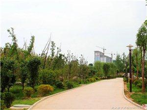 美丽大象山――水上公园(三)