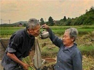 幸福需要经营,珍惜身边最爱你的人!