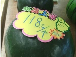 哪家的西瓜这么贵,起马不是汉寿产的!