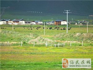 我想去云南旅游