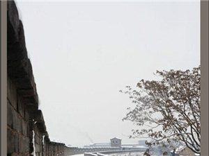 翻到电脑里过年时候拍的古城雪景,拿出来分享一哈