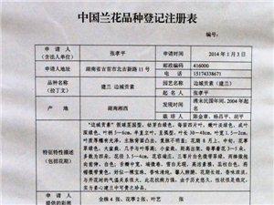 """澳门网上投注网址市""""边城贡素""""获中国兰花品种认证"""