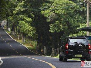 听着歌、开着车自驾在这样的山中大路上,爽!