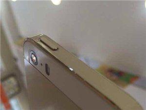 一点水珠,用手机摄像头也能拍出微世界。