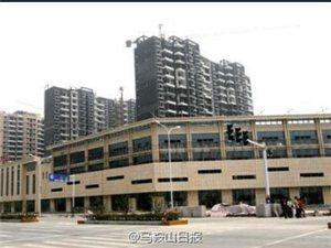 郑蒲港新区重点项目建设加快推进