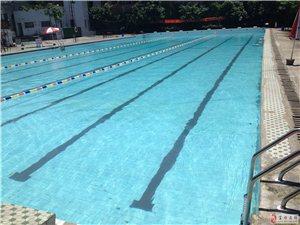清澈�底的新�游泳池�g迎你,知名游泳教�培�,�你���状握n�W��游泳