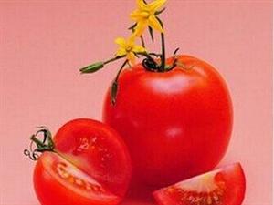 西红柿防癌又护肝