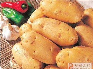 【土豆让你更年轻】