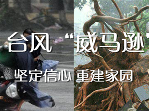 """台风""""威马逊"""""""