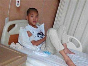 11岁女孩身患白血病 急寻亲生父母配型