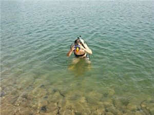 夏季潜水,看着就爽