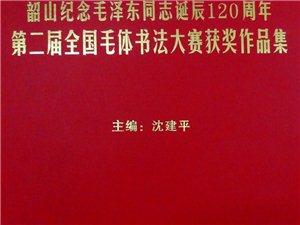 胡志伟毛体书法作品获银奖