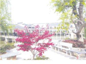 澳门牌九游戏注册新建一所寄宿制民办学校