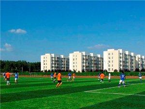 虞城八人制足球赛第二轮,虞城在线足球队3比0虞城92元老队首战告捷!