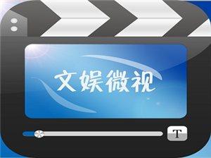 府谷在线文娱微视品牌名称征集
