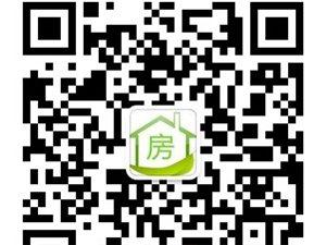三亚涛升国际售楼处招聘派单员数名工资3000元/月