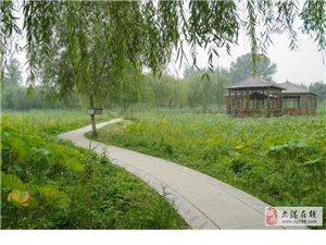 杨柳青庄园