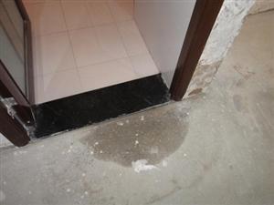 不同的部位需要选用适用的防水涂料