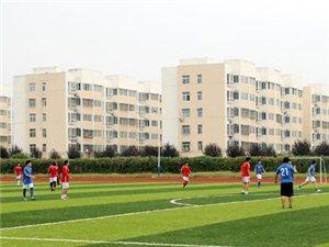 虞城八人制足球联赛第五轮战况:虞城在线2比0虞城蓝翼老男孩队