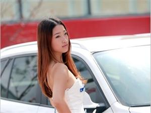 2014年威尼斯人注册_明升网址首届汽车博览会(车模争艳)