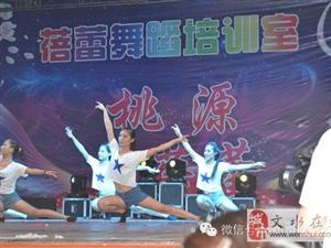 蓓蕾舞蹈跳起来的人生,从未落下的梦想!