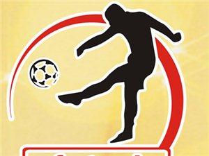 2014年鹤山市男子五人制足球锦标赛