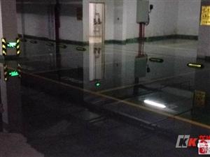 博世园地下室因水管爆裂造成大面积进水连机房都不能幸免